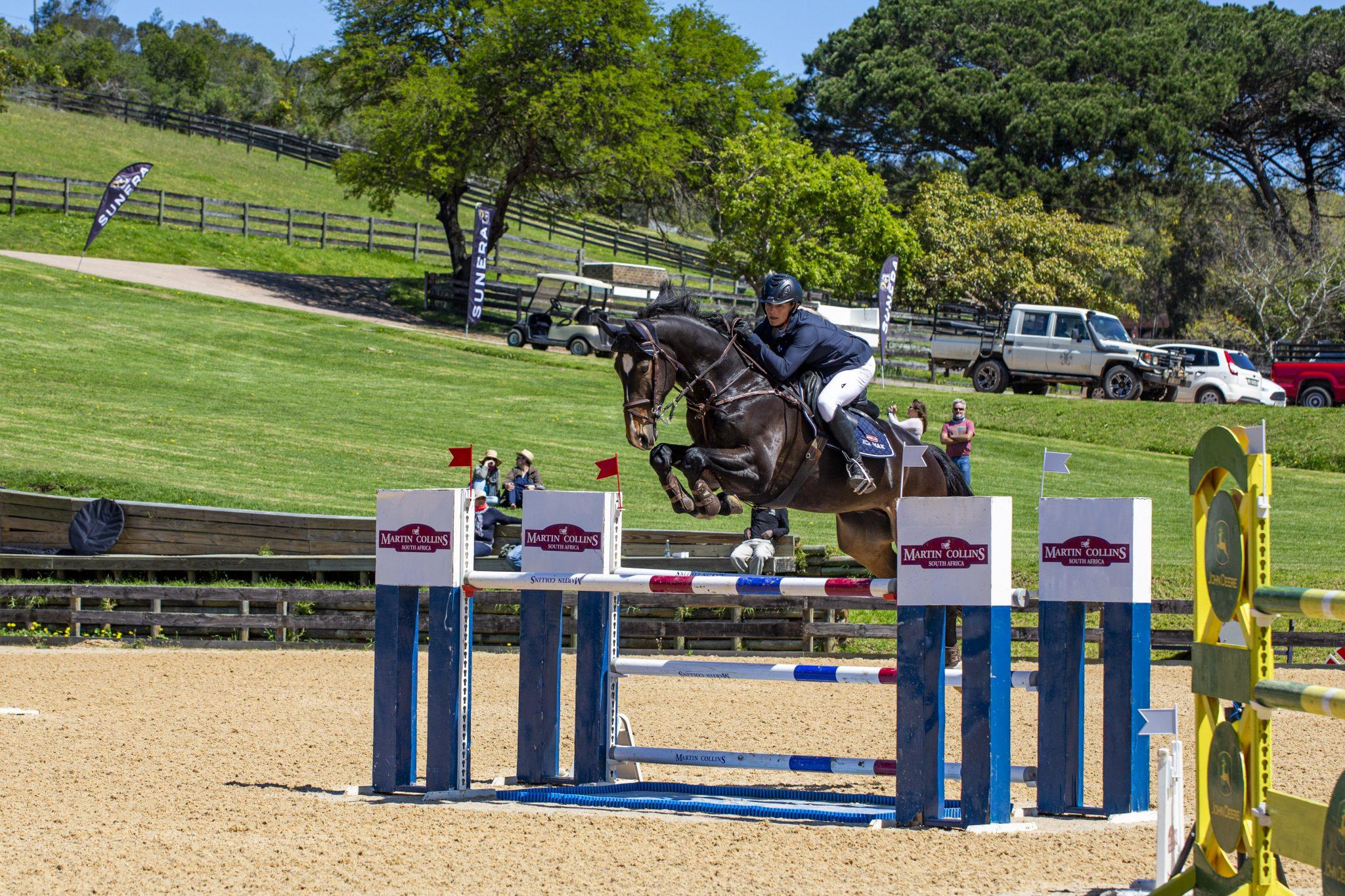 Jade's Horses